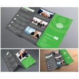 11x17 Trifold Brochures